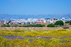 View of the town of Paphos from the Archaeological park. Stock Photos