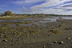 Searsport Maine Low Tide Royalty Free Stock Image