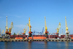 View on trading port with cranes. Containers and cargoes Stock Photo
