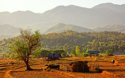 View of traditional farm in nort of Thailand Royalty Free Stock Photo
