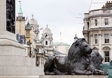 View from Trafalgar Square Stock Image