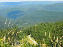 View of the trail in the Beskydy Mountains. (Czech Republic royalty free stock photo