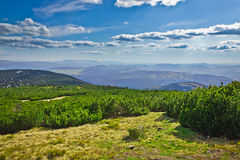 View from trail to the Pilsko Peak from Beskidy mountains Stock Photography