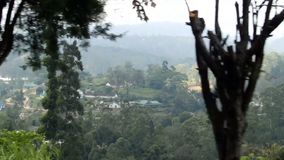 View from the train to Ella. Sri Lanka Royalty Free Stock Photo