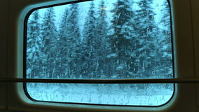 View through the Train Window at the Winter Woods. Seamless Loop stock video footage