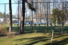 View on the training field through the trees Royalty Free Stock Photos