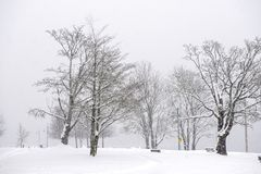 View of Transfer Beach park during a winter storm in Ladysmith, BC royalty free stock image