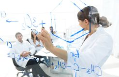 View through the transparent Board. female biochemist makes a report to colleagues Stock Photography