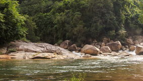 View from Transparent River to Stormy Cascade by Rocks Trees stock video