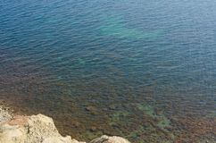 View on transparent turquoise sea water with seaweed Stock Photography