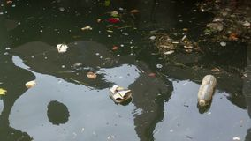 A view of trash floating. In polluted water stock footage