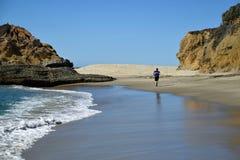 View of Treasure Island and coastline in Laguna Beach, California. Royalty Free Stock Photo