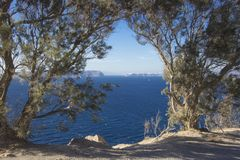 View in the trees the Caldera in Santorini. View among the Caldera sea trees in Santorini in Greece royalty free stock photos