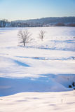 View of trees and fences in a snow-covered farm field in rural Y Stock Images