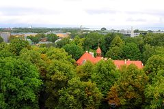 View of trees and roofs of old building in Tallinn, Estonia royalty free stock photo