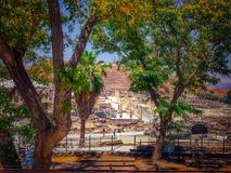 View through trees of row of Columns Line a Cardo Archaeological Ruins of Beit She`an located in Israel Royalty Free Stock Images