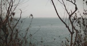 View through the trees on the sea with boat. During cloudy day stock video