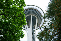 View through trees of Space Needle Royalty Free Stock Images
