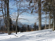 View through the trees. Sunny day with fine view over Bucegi mountains Stock Photos
