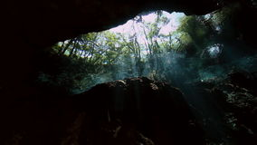 View of trees from underwater in Mexican cenote. View of trees from underwater in the bush landscape Mexican Sacred Mayan Cenote. Deep underground clean and stock footage