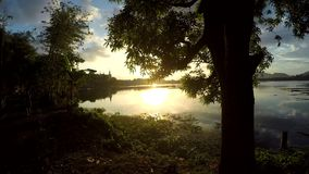 View of trees and vegetation on mountain lake reserve at golden sunset stock video footage