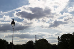 A view of the treetops in a Paris park and the Eiffel Tower in t Royalty Free Stock Photos