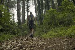 View of a trekking track Royalty Free Stock Image
