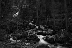 Triberg waterfall at spring Schwarzwald germany stock image