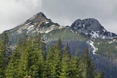 View of the Triglav with Pokljuka Plateau. Slovenia Stock Photos