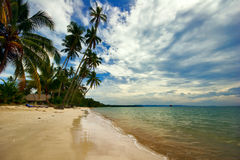 View of tropical beach Royalty Free Stock Photo