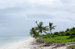 View of tropical beach in Cayo Guillermo Royalty Free Stock Photography