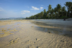 View of a tropical beach at low tide Stock Photos