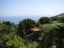 View of tropical botanic garden in Funchal Stock Photos