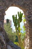 View of tropical garden in the town of Eze Royalty Free Stock Photography