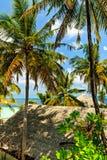 View in tropical hotel Ranveli, Maldives Stock Image