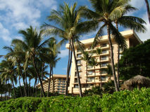 View of Tropical Hotels or Resorts. View of tropical resorts in palm tree tropical setting Stock Images