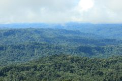 View of tropical rainforest and clouds moving in stock images