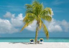 view of tropical white sand beach and ocean. Gorgeous view of soft white sand beach and two beads covered with towels under charming fluffy palm tree against Stock Photography