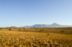 View of the Tsavo East savannah Royalty Free Stock Image