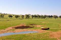 View of the Tsavo East savannah Royalty Free Stock Images