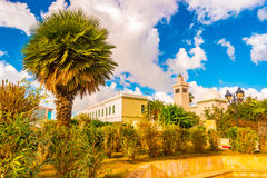 View in Tunis with white architecture. Minaret and beautiful palm tree. Tunis, Tunisia Stock Image