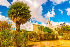 View in Tunis with white architecture. Minaret and beautiful palm tree. Tunis, Tunisia Royalty Free Stock Photos