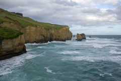 A view from Tunnel Beach Stock Image