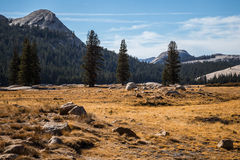View from Tuolumne Meadows Stock Photography