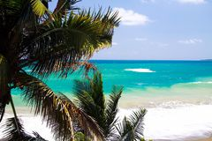 View on turquoise coastline near blue lagoon with wave breakers and white foam beyond palm trees, Portland, Jamaica royalty free stock image