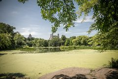 View on the Turtle Pond in Central park in New York Stock Photos