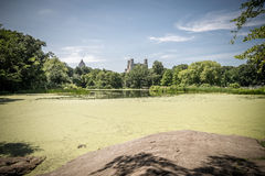 View on the Turtle Pond in Central park in New York Royalty Free Stock Photo