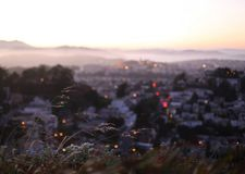 View from Twin Peaks over the City of San Francisco, California. Sunset vista over the city below Royalty Free Stock Photos