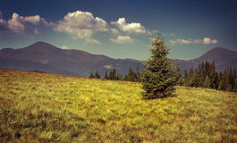 View of two mountains peak in the Carpathian mountain Royalty Free Stock Images