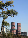 View of two towers. View of the Gandhi towers, Mexico DF Royalty Free Stock Photo